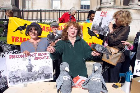 Pigeon Protector Susan Fletcher Pictured With Protesters At Trafalgar Square In London After The Council Decided To Make It Illegal To Feed The Pigeons In The Area.