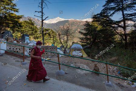 An exile Tibetan Buddhist nun wearing a mask as precaution against the coronavirus circumambulates the residence of her spiritual leader the Dalai Lama in Dharmsala, India