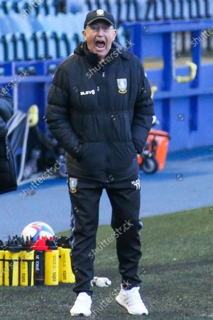 Tony Pulis manager of Sheffield Wednesday during the game