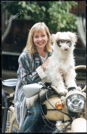Stock Picture of Liza Goddard (mrs Jessop) With 'punch' There Was No Mistaking The Moment When Friendship Turned To Love Between Actress Liza Goddard And Director David Cobham. The Two Pursued Their Romance On The Set Of The Children's Tv Series Woof! Which Starts A New Run On October 13 - She Plays School Teacher Mrs Jessop While He Is The Director. The Couple Have Known Each Other For 13 Years And Plan To Marry Next Year. Pkt1488 - 57473