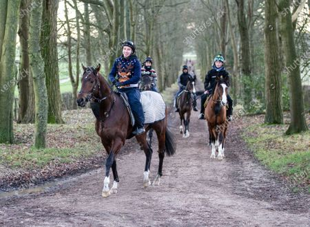 Race horses at the Yard of trainer Andrew Balding return to the Yard after early morning exercise on the gallops at Kingsclere.