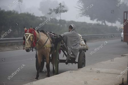 A boy wrapped in woolens is seen sitting on a horse cart amid fog and cold weather at Delhi-Gurugram Expressway near Hero Honda Chowk, on December 30, 2020 in Gurugram, India. Delhiites woke up to a foggy morning on Monday, as a thick layer of fog engulfed the national capital. Apart from Delhi, the fog was also witnessed in the National Capital Region including Ghaziabad, Faridabad, Gurugram and Noida. Due to low visibility and ongoing farmers' protest, traffic has slowed down across the capital.