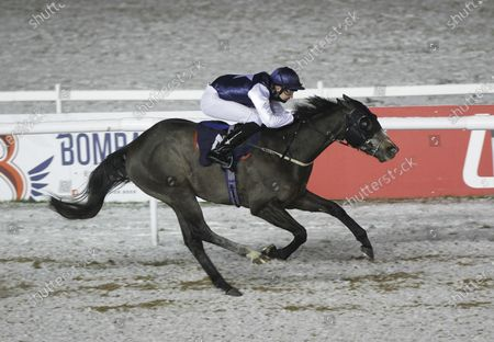 Obtuse and Charles Bishop win the Ladbrokes Handicap at Wolverhampton.