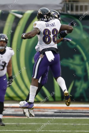 Baltimore Ravens Dez Bryant (88) celebrates with wide receiver Miles Boykin (80) after he made against the Cincinnati Bengals for a touchdown during the first half of an NFL football game, in Cincinnati