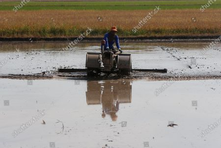 A farmer clears his rice field using a motorized plough, instead of the traditional slash-and-burn method, in Nakhon Sawan province.