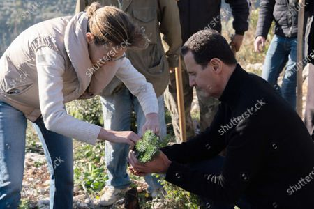 Syrian President Bashar al-Assad and his wife Asma during the afforestation of Harsh al-Tufaha (Apple Forest) area in al-Drekish countryside in western Syria.