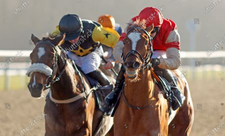 Stock Image of TOROCHICA (right, Charles Bishop) beats OSLO (left) in The Betway Casino Handicap Lingfield