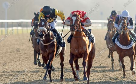 Stock Photo of TOROCHICA (right, Charles Bishop) beats OSLO (left) in The Betway Casino Handicap Lingfield