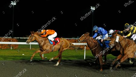 Editorial picture of Horse Racing - 13 Jan 2021