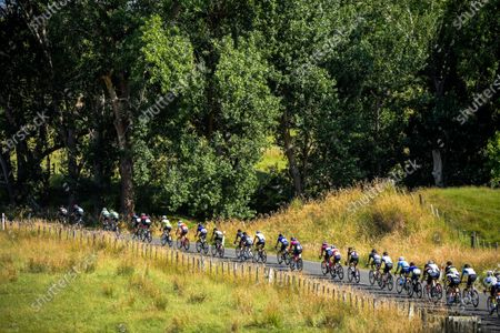 Stock Picture of Masterton-Alfredton road circuit - Stage Two of 2021 NZ Cycle Classic UCI Oceania Tour in Wairarapa, New Zealand on Wednesday, 13 January 2021.