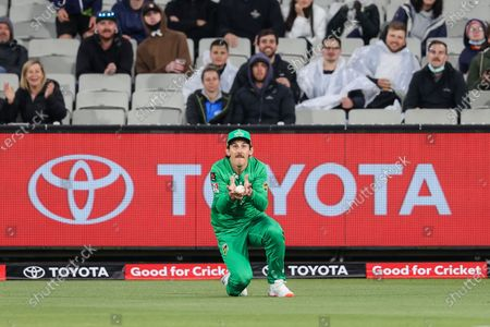 Stock Picture of Nic Maddinson of the Melbourne Stars takes a catch during the Melbourne Stars vs Adelaide Strikers T20 Big Bash league match at Melbourne Cricket Ground, Melbourne