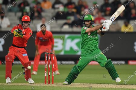 Glenn Maxwell of the Stars hits the ball through the off side; Melbourne Cricket Ground, Melbourne, Victoria, Australia; Big Bash League Cricket, Melbourne Stars versus Melbourne Renegades.