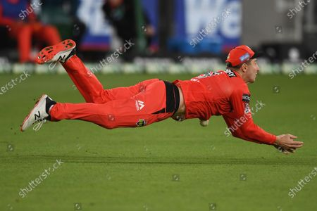 Stock Picture of Shaun Marsh of the Renegades dives for a catch; Melbourne Cricket Ground, Melbourne, Victoria, Australia; Big Bash League Cricket, Melbourne Stars versus Melbourne Renegades.