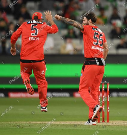 Aaron Finch and Kane Richardson of the Renegades celebrate the wicket of Glenn Maxwell of the Stars; Melbourne Cricket Ground, Melbourne, Victoria, Australia; Big Bash League Cricket, Melbourne Stars versus Melbourne Renegades.