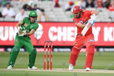 Aaron Finch of the Renegades cuts the ball to slips; Melbourne Cricket Ground, Melbourne, Victoria, Australia; Big Bash League Cricket, Melbourne Stars versus Melbourne Renegades.