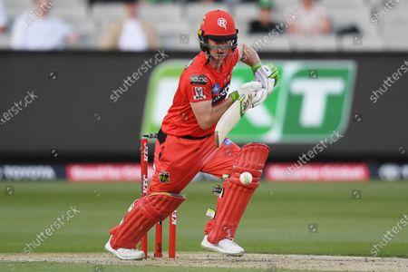 Editorial picture of Melbourne Stars v Melbourne Renegades Big Bash Cricket match, Australia - 17 Jan 2021