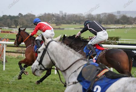 Editorial image of Punchestown Racing, Punchestown Racecourse, Naas, Co. Kildare - 17 Jan 2021