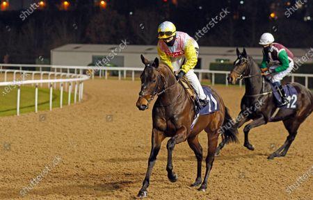 Editorial image of Horse Racing - 18 Jan 2021