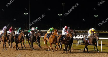 Editorial picture of Horse Racing - 18 Jan 2021