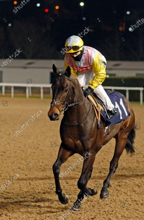 Editorial photo of Horse Racing - 18 Jan 2021