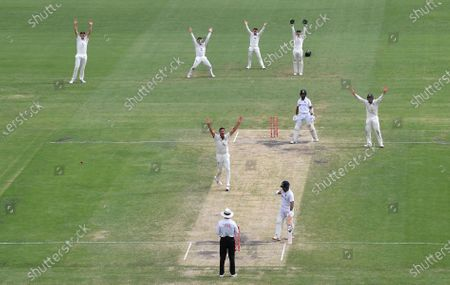 Mitchell Starc (centre) of Australia appeals unsuccessfully for the wicket of Cheteshwar Pujara of India during day five of the fourth Test Match between Australia and India at the Gabba in Brisbane, Australia, 19 January 2021.
