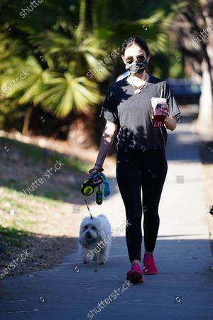 Lucy Hale is seen walking her dog.