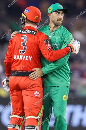 Glenn Maxwell of the Melbourne Stars checks on Mackenzie Harvey of the Melbourne Renegades after he takes a tumble during the Melbourne Renegades vs Melbourne Stars Twenty20 Big Bash League match at Marvel Stadium, Melbourne