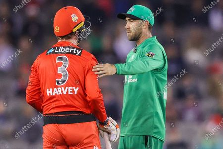 Glenn Maxwell of the Melbourne Stars (right) checks on Mackenzie Harvey of the Melbourne Renegades after he takes a tumble during the Melbourne Renegades vs Melbourne Stars Twenty20 Big Bash League match at Marvel Stadium, Melbourne