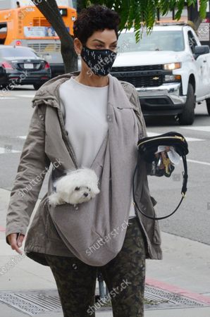Stock Image of Exclusive - Nicole Murphy out and about with her dog on a chilly day in Beverly Hills