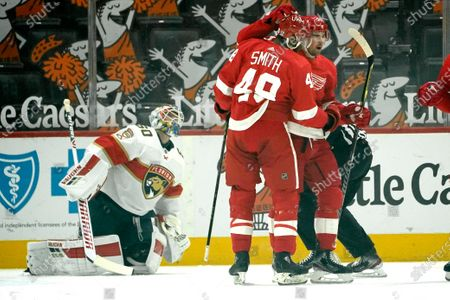 Stock Photo of Detroit Red Wings center Dylan Larkin (71) celebrates his goal with Givani Smith as Florida Panthers goaltender Chris Driedger looks on in the first period of an NHL hockey game, in Detroit
