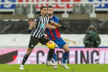 Callum Wilson of Newcastle United shields the ball from Gary Cahill of Crystal Palace; St James Park, Newcastle, Tyne and Wear, England; English Premier League Football, Newcastle United versus Crystal Palace.