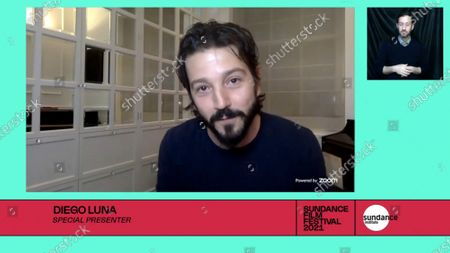 Stock Picture of Diego Luna