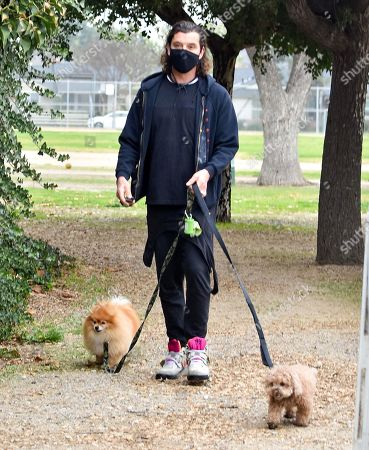 Gavin Rossdale is seen walking his dogs in the park