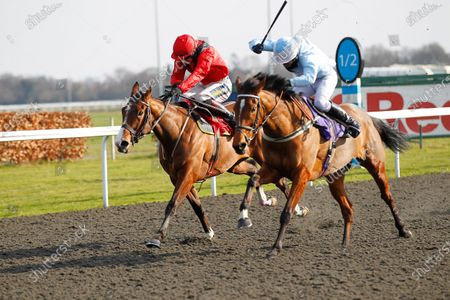 Sheila Nash and Alan Doyle [right] wins the Vbet Promotes Responsible Gambling Mares' Standard Open National Hunt Flat Race at Kempton from Ballybough Mary.