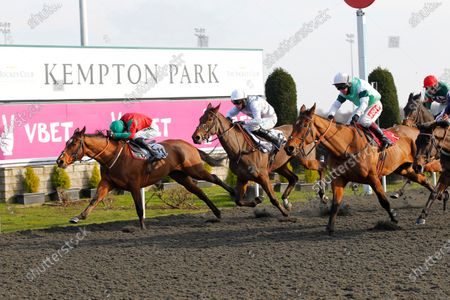 Chalgrove and Richard Johnson [3rd left] just pips Presenting Pete [right], Toutatis [left] and Monymusk Lad [2nd left] in a thrilling finish to the Be Better Be Vbetter 'Newcomers' Standard Open National Hunt Flat Race at Kempton.
