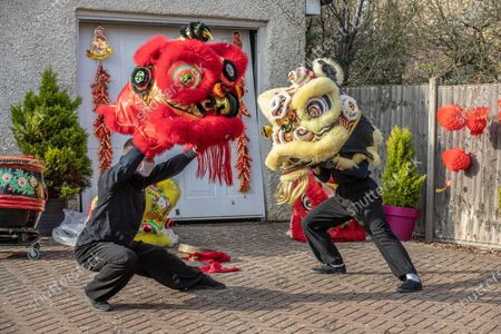 Chinese New Year: Lion Dance Instructor Matt Williams from the World Eagle Claw Association UK gives his costumes an airing with Greg Currie in his back yard in Hampshire over the Chinese New Year after all his bookings and performances have been cancelled due to the current Coronavirus Lockdown during the Year of the Ox festivities.