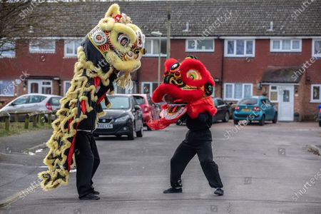 Stock Image of Chinese New Year: Lion Dance Instructor Matt Williams from the World Eagle Claw Association UK gives his costumes an airing with Greg Currie in the street in Hampshire over the Chinese New Year after all his bookings and performances have been cancelled due to the current Coronavirus Lockdown during the Year of the Ox festivities.
