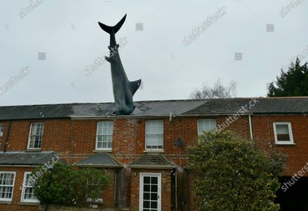 The Headington Shark is one of the more unusual landmarks in Oxford and a very quirky place to stay. The shark at 25ft is certainly not hard to miss as the sculpture sticks out of the roof of a terraced house in New High Street in Headington. It was commissioned by Bill Heine, an American-born journalist and broadcaster, who came to Oxford in the 1960s to study at Oxford University. He worked at BBC Oxford and the Oxford Mail. Mr Heine died of cancer, aged 74, in 2019 and to preserve the shark BillÕs son Magnus bought the house in 2016 and it is now a star attraction on Airbnb and Booking.com