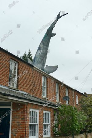 Stock Photo of The Headington Shark is one of the more unusual landmarks in Oxford and a very quirky place to stay. The shark at 25ft is certainly not hard to miss as the sculpture sticks out of the roof of a terraced house in New High Street in Headington. It was commissioned by Bill Heine, an American-born journalist and broadcaster, who came to Oxford in the 1960s to study at Oxford University. He worked at BBC Oxford and the Oxford Mail. Mr Heine died of cancer, aged 74, in 2019 and to preserve the shark BillÕs son Magnus bought the house in 2016 and it is now a star attraction on Airbnb and Booking.com