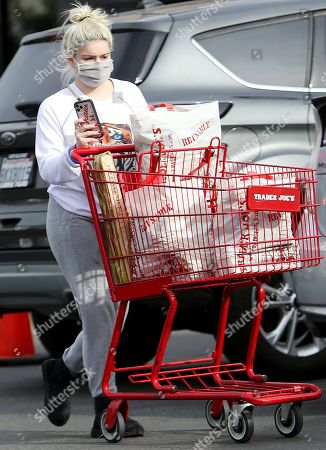 Ariel Winter is seen shopping for groceries at Trader Joe's in Studio City