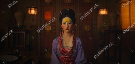 Stock Picture of Yifei Liu