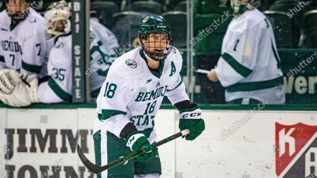 Editorial photo of Northern Michigan St Hockey, Bemidji, United States - 13 Feb 2021
