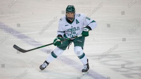 Stock Picture of Bemidji State defenseman Brad Johnson (18) skates against Northern Michigan during an NCAA hockey game, in Bemidji, Minn
