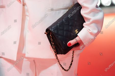 Stock Image of A detail of bag of Nora von Waldstatten attends the 'The Kindness Of Strangers' Red Carpet at the 69th Berlinale International Film Festival Berlin on February 7, 2019, in Berlin, Germany. The Berlin film festival will be running from February 7 to 17, 2019. Nearly 400 movies from around the world will be presented, with 17 vying for the prestigious Golden Bear top prize.