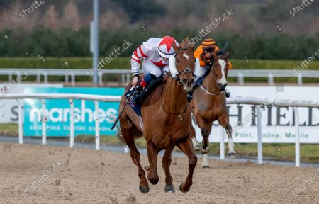 Stock Image of The DundalkStadium.com Race. Dylan McMonagle onboard Grandmaster Flash comes home to win