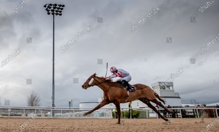 The DundalkStadium.com Race. Dylan McMonagle onboard Grandmaster Flash comes home to win