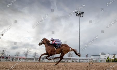 Stock Picture of The DundalkStadium.com Race. Dylan McMonagle onboard Grandmaster Flash comes home to win
