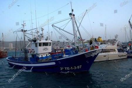 The first bluefin tuna that has reached the port of Los Cristianos weighed 250 kilos and was brought by the New Moby Dick fishing boat along with 10 specimens plus the largest one weighed 305 kilos.