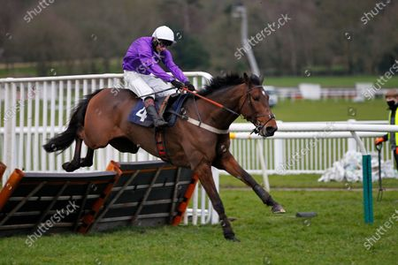 Editorial image of Horse Racing - 21 Feb 2021