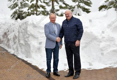 Russian President Vladimir Putin (L) shakes hands with Belarus President Alexander Lukashenko (R) during their meeting in the Black sea resort of Sochi, Russia, 22 February 2021.